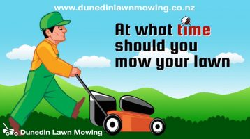 Dunedin Lawn Mowing