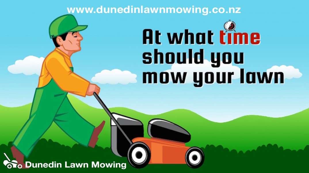 What Time Should I Mow My Lawn Dunedin Mowing